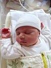 KRISTÝNA SLOUPOVÁ se narodila 4. dubna ve 14.05 hodin mamince Aleně a tatínkovi Petrovi z Mariánských Lázní. Po příchodu na svět v plzeňské fakultní nemocnici vážila sestřička dvouleté Michaely 3570 gramů a měřila 49 centimetrů.