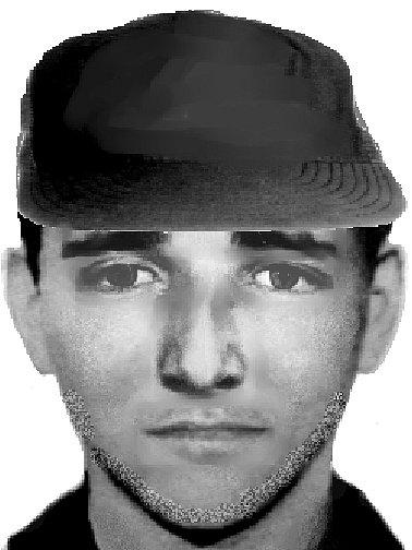 Policiejní identikit výtržníka z Františkových Lázní