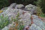 Pouhých Pár kilometrů od Chebu u obce Hazlov se nachází přírodní památka s názvem Goethova skalka.