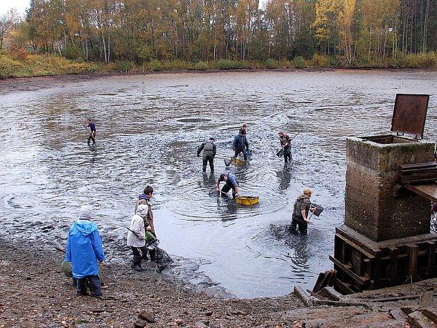 Mezi prvními se začal lovit rybník Březovka – Porcelánka v Aši.