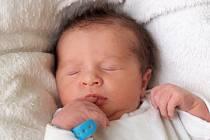DAVID PETROVKA si poprvé prohlédl svět ve středu 13. listopadu v 10.52 hodin. Při narození vážil 3 500 gramů a měřil 51 centimetrů. Doma v Chebu se z malého Davídka raduje bráška Filípek, maminka Veronika a tatínek Milan.