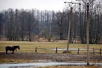 V okolí Nebanic už voda zalila některé níže položené úseky pastvin