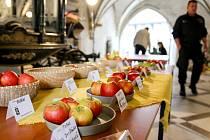 PODZIMNÍ SLAVNOST se v chebském muzeu konala poprvé. Její pracovníci by z ní ale rádi vytvořili tradici, která si najde stálé místo v kulturním kalendáři.