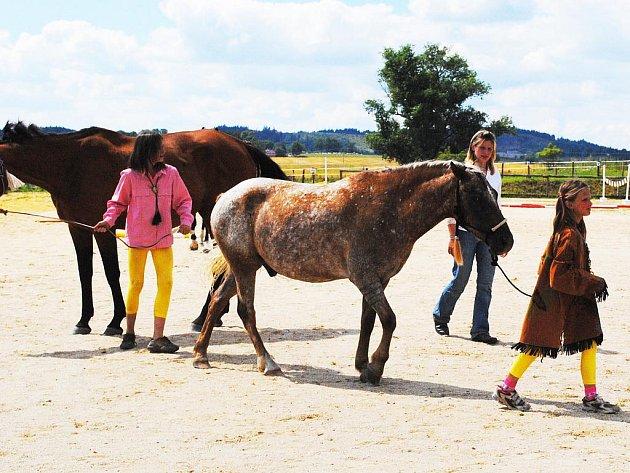 Jezdecký klub Elizabeth v Sorkově uspořádal historicky první westernovou soutěž.