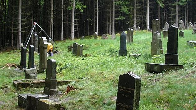 Židovský hřbitov v Drmoulu