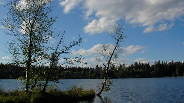 Kladská ve Slavkovském lese