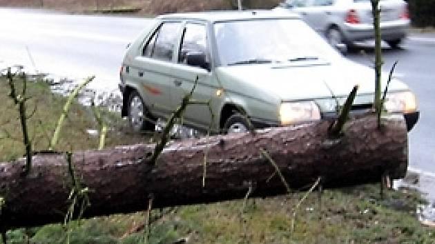 Pondělní bouře kácela v Chebu stromy