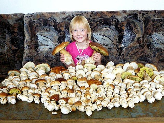 ÚRODU   HŘÍBKŮ si úhledně vyrovnala pětiletá houbařka Verunka Mojcherová z Aše.