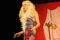 Velký potlesk sklidili herci z Divadélka Michala Rejžo Pavlíka při MěDDM Mariánské Lázně za premiéru hry Kráska na scéně neboli Variace na hamletovské téma.