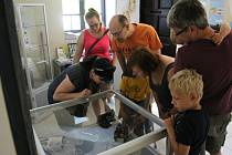 V prostorách seismologického muzea ve Skalné si mohli všichni zájemci prohlédnout zdejší historické exponáty.