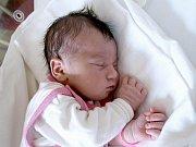 PAVLA SOBOTNÍKOVÁ se narodila v chebské porodnici v pátek 25. září v 11.08 hodin. Vážila 3450 gramů a měřila 50 centimetrů. Doma v Michalových Horách se těší jeden a půlletá Petruška a tatínek Josef na návrat maminky Aničky a malé Pavlínky.