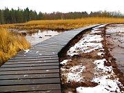 Unikátní národní přírodní rezervace Soos u Františkových Lázní bude pro návštěvníky zase o něco atraktivnější. Městské muzeum Františkovy Lázně spolu s městem tu totiž dokončilo rekonstrukci přes kilometr dlouhého povalového chodníku napříč rezervací.