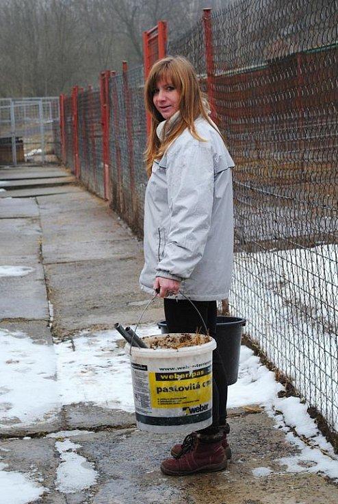JEDEN kbelík na exkrementy, ve druhém je krmení. Denně padne v útulku více než dvacet kilogramů granulí a konzerv.