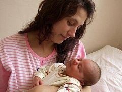 ESTER NETÍKOVÁ se narodila v pondělí 15. února ve 2.15 hodin. Při narození vážila krásných 4150 gramů a měřila 53 centimetrů. Doma v Chebu se z malé Esterky sedmiletá Barunka, maminka Dagmar a tatínek Miloslav.