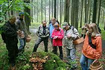 PRŮZKUM A MAPOVÁNÍ hub (v okolí Lázní Kynžvartu) před tradiční výstavou si účastníci pochvalovali.