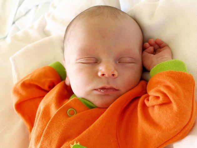 DOMINIK VLK si pro svůj příchod na svět vybral pátek 23. března v 16.42 hodin. Vážil 2850 gramů a měřil 47 centimetrů. Maminka Věra a tatínek Lukáš se radují z malého Dominička doma ve Františkových Lázních.
