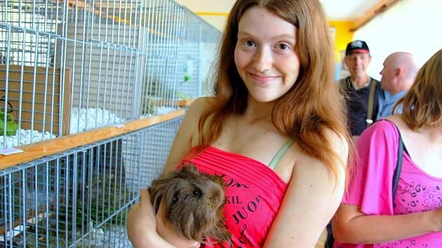TEREZA DRAHOZALOVÁ (na snímku) měla na výstavě hned tři morčata. V rukou drží svého oblíbence Merlina.