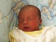 SEBASTIÁN KANALOŠ se poprvé rozkřičel v pondělí 25. ledna v 17 hodin. Na svět přišel s váhou 3340 gramů a mírou 49 centimetrů. Doma v Aši se z malého Sebastiánka raduje maminka Nikola spolu s tatínkem Petrem.