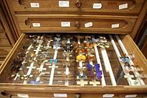 Běžně nepřístupný centrální depozitář chebského muzea se o víkendu otevřel veřejnosti. K vidění tak byla například sbírka hodin, loutek či nábytku.