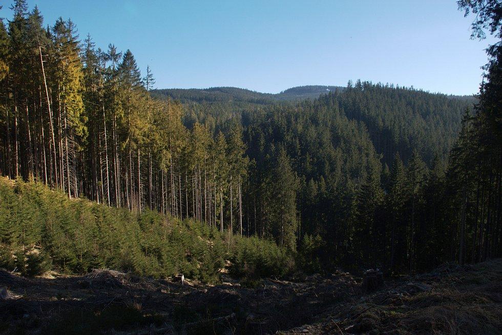 Od Podleského potoka a nedaleké vyhlídky.