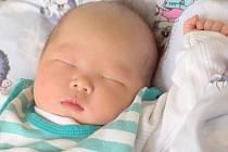 DAT THANH NGUYEN přišel na svět ve středu 10. července v 8.54 hodin. Vážil 3 500 gramů a měřil 48 centimetrů. Z malého synka se raduje doma v Chebu maminka Phuong.
