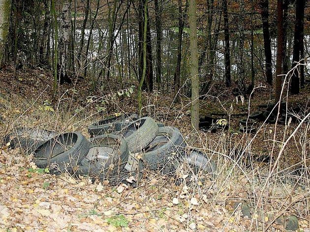 ČERNÁ skládka pneumatik dělá vrásky nejednomu ekologicky smýšlejícímu občanovi Chebska. Petr Švehla z Františkových Lázní ji objevil v minulém týdnu mezi Potočištěm a Chvoječnou.