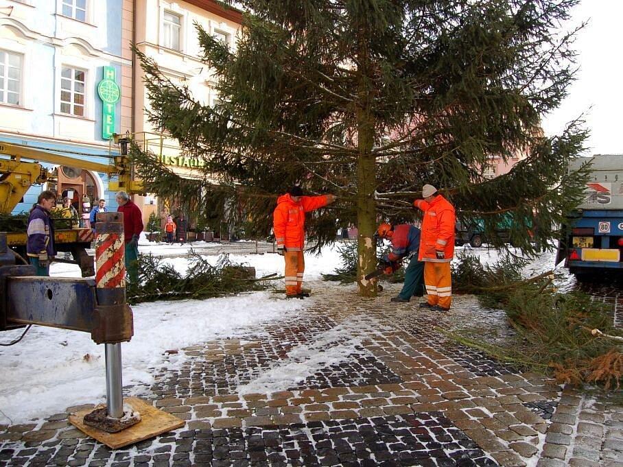 Hotovo: Vánoční strom je už na místě