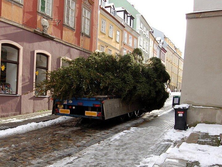 Vánoční strom bude opět usazen v horní části chebského náměstí Krále Jiřího z Poděbrad