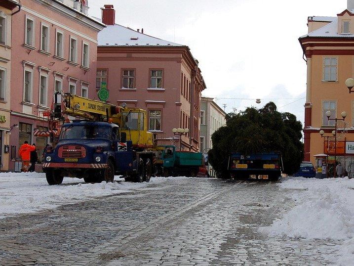 Vánoční strom bude už tradičně umístěn v horní části chebského náměstí Krále Jiřího z Poděbrad