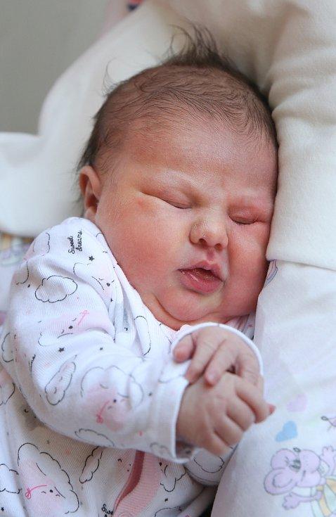 ELIŠKA HORVÁTOVÁ se poprvé rozkřičela v neděli 1. prosince v 17 hodin. Na svět přišla s váhou 3 930 gramů. Doma ve Starém Rybníku se z malé Elišky radují sourozenci spolu s maminkou Petrou a tatínkem Imrichem.