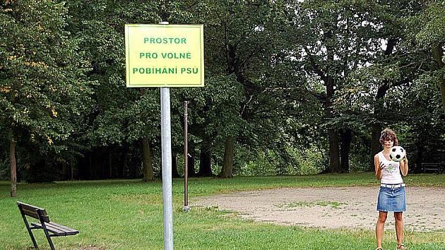 """Podle původního návrhu """"psí"""" vyhlášky v Chebu, mohli majitelé psů venčit své miláčky na dětském hřišti ve Dvořákovo sadech"""
