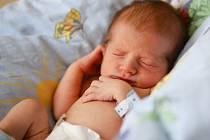 PAVEL JUHAS se poprvé rozkřičel v sobotu 6. února v 10.27 hodin. Na svět přišel s váhou 2 490 gramů a mírou 47 centimetrů. Maminka Eva a tatínek Pavel se těší z malého Pavlíčka doma v Ovesných Kladrubách.