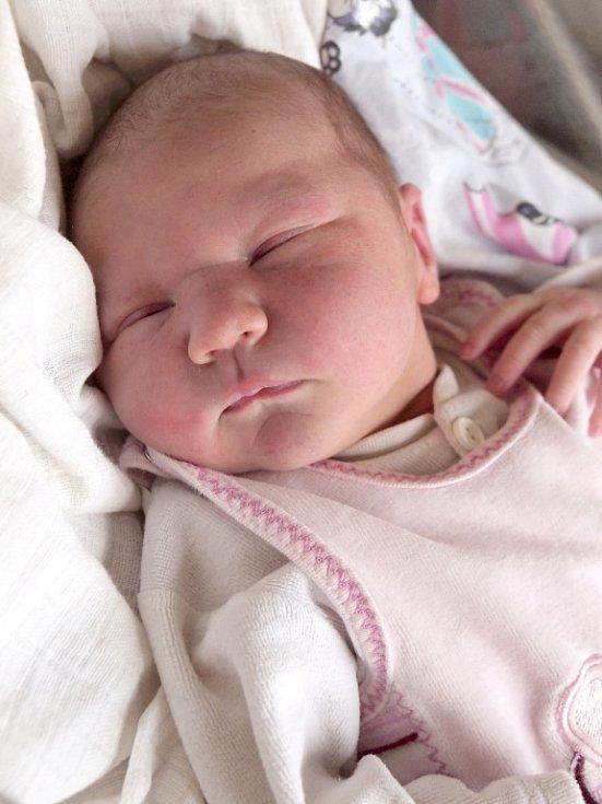VÁCLAV GÖLLNER se narodil v úterý 18. prosince ve 23.45 hodin. Na svět přišel s váhou 3 630 gramů a mírou 51 centimetrů. Z malého Vašíčka se raduje bráška Kája spolu s maminkou Kateřinou a tatínkem Karlem doma v Lipoltově.