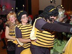 V pořadí již 38. ročník divadelního plesu se uskutečnil v sobotu v chebském Produkčním centru Kamenná. Pobavit se přišlo několik stovek lidí.