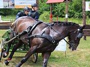 Atraktivní podívaná nabídla úžasnou souhru lidí a koní. Takový byl 25. ročník mezinárodních vozatajských závodů v Nebanicích.