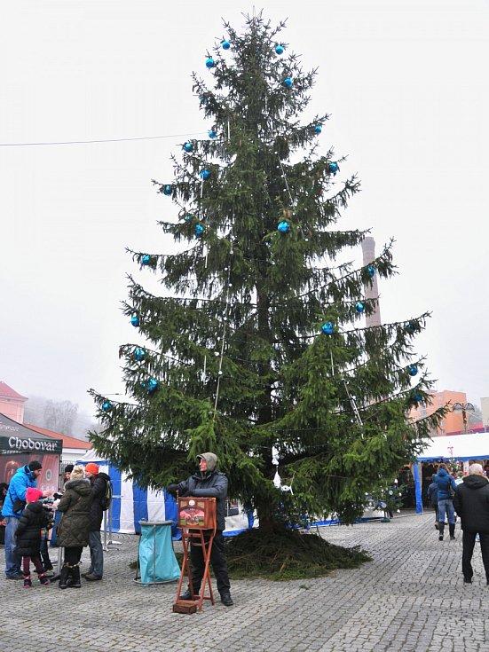 Poštovní náměstí rozzářil strom.