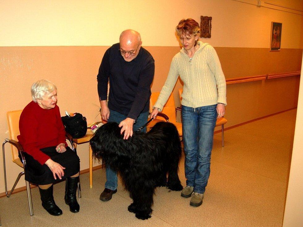 Chebští senioři se těší na každé úterý, kdy je do domova v Dragounské ulici v Chebu chodí navštěvovat canisterapeutický pes briard Jack