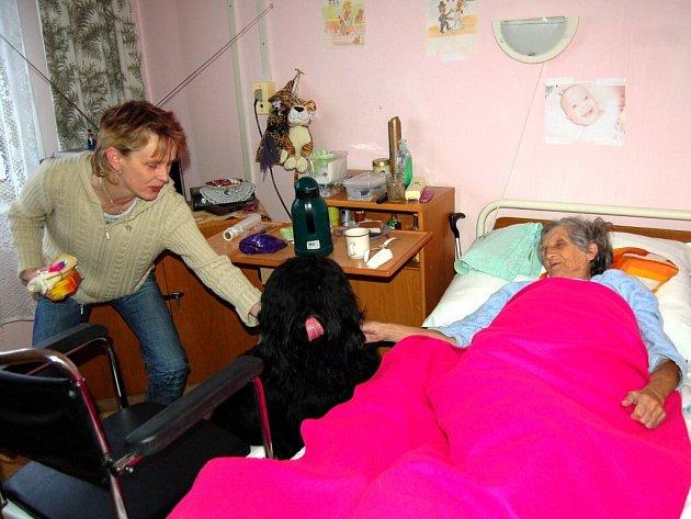 CANISTERAPEUTICKÉHO PSA Jacka zdraví obyvatelé Domova pro seniory v Chebu nadšeně, stejně jako Miloslava Bognerová.