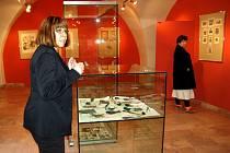 Letošní sezónu zahájí v chebském muzeu výstavou prací výtvarnice Michaely Lesařové - Roubíčkové.