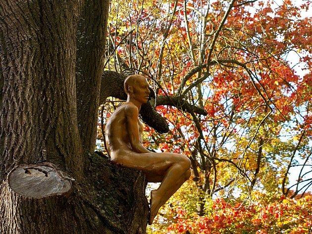 FIGURÍNA SEDÍCÍ ŽENY jménem Na stromě se do parku u chebské Brandlovy ulice vrátila, jen na jiný strom. Vandal ji ale na jaře natolik poškodil, že musela autorka zhotovit repliku.