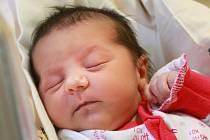 Šarlota Pulková si poprvé prohlédla svět v úterý 15. ledna v 10.16 hodin. Při narození vážila 3 060 gramů. Doma v Chebu se z malé Šarlotky radují sourozenci Štefan, Veronika a Natálie, maminka Veronika a tatínek Josef.