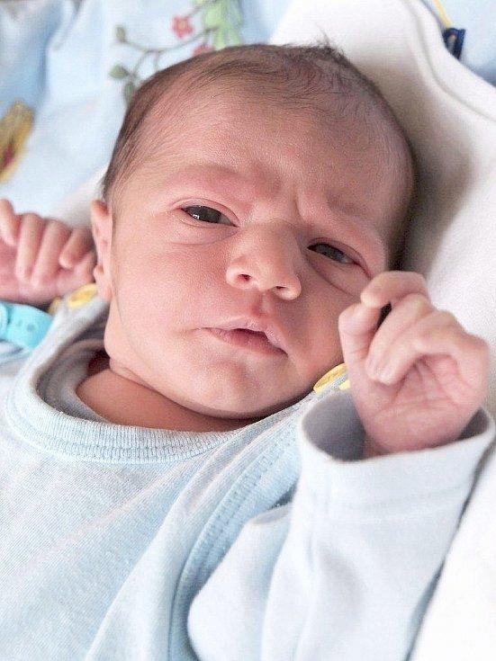 NICOLAS STEHLÍK se poprvé rozkřičel v úterý 25. prosince v 10.30 hodin. Na svět přišel s váhou 2 600 gramů a mírou 46 centimetrů. Doma v Tuřanech se z malého Nicolase raduje bráška Filip se sestřičkou Aničkou, maminkou Klárou a tatínkem Štefanem.