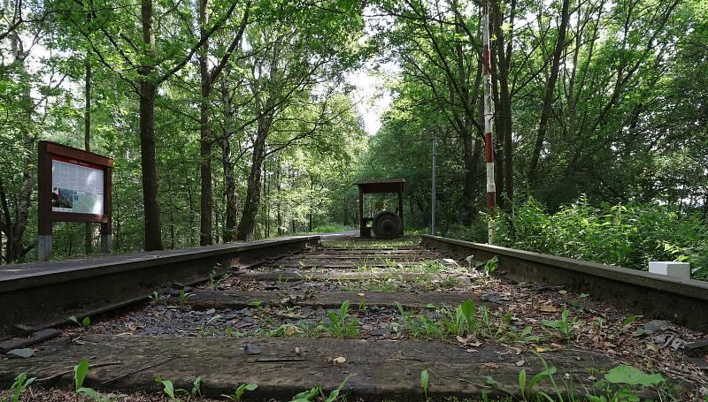 První vlak přijel do Chebu po dnes zrušené železnici, trať slouží cyklistům