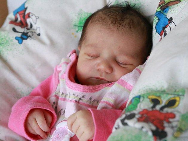 LISA VAŠÍČKOVÁ si poprvé prohlédla svět ve středu 17. ledna v19 hodin. Na svět přišla sváhou 2830 gramů. Doma vChebu se zmalé sestřičky těší sourozenci spolu smaminkou Annou a tatínkem Karlem.
