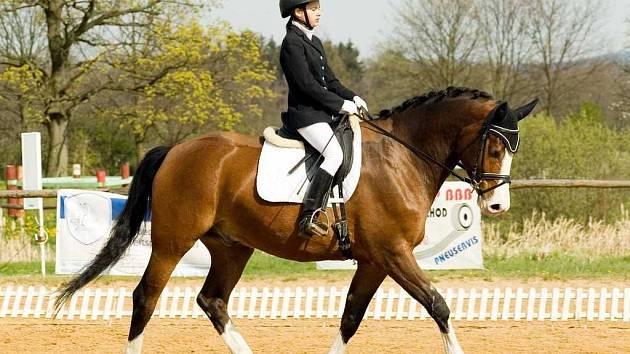 Alena Vrbová na koni al-Drak
