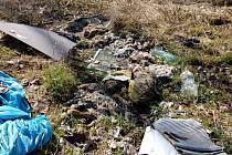 Na černé skládce u Střížova na Františkolázeňsku byly objeveny zbytky mrtvých psů a koz. Případ dále vyšetřuje chebská policie