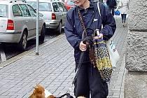 V Chbu musí psi na veřejných prostranstvích chodit stále na vodítku