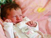 JITKA GABRIELOVÁ přišla na svět v úterý 26. dubna v 4.28 hodin. Při narození vážila 2 700 gramů a měřila 48 centimetrů. Doma v Chebu se z malé Jitušky radují sourozenci Ludvík, Zuzana, Petr a Tomáš, maminka Jitka a tatínek Ludvík.