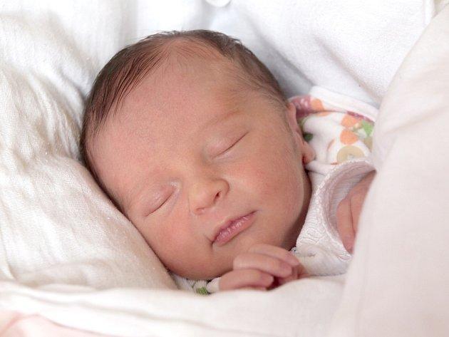 NIKOLA DVOŘÁKOVÁ si poprvé prohlédla svět ve středu 26. prosince v 11.40 hodin. Při narození vážila 2 300 gramů a měřila 44 centimetrů. Doma v Plzni se z malé Nikolky těší maminka Zdenka spolu s tatínkem Vítězslavem.