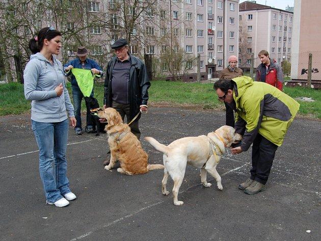 HANA HOŠKOVÁ (vlevo) si ověřuje, jak slepečtí psi zvládají základní povely.